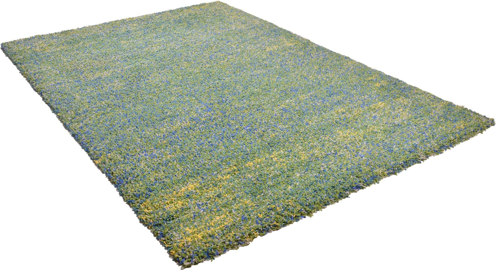 Maschinenwebteppich Color Shag Theko Textil grün