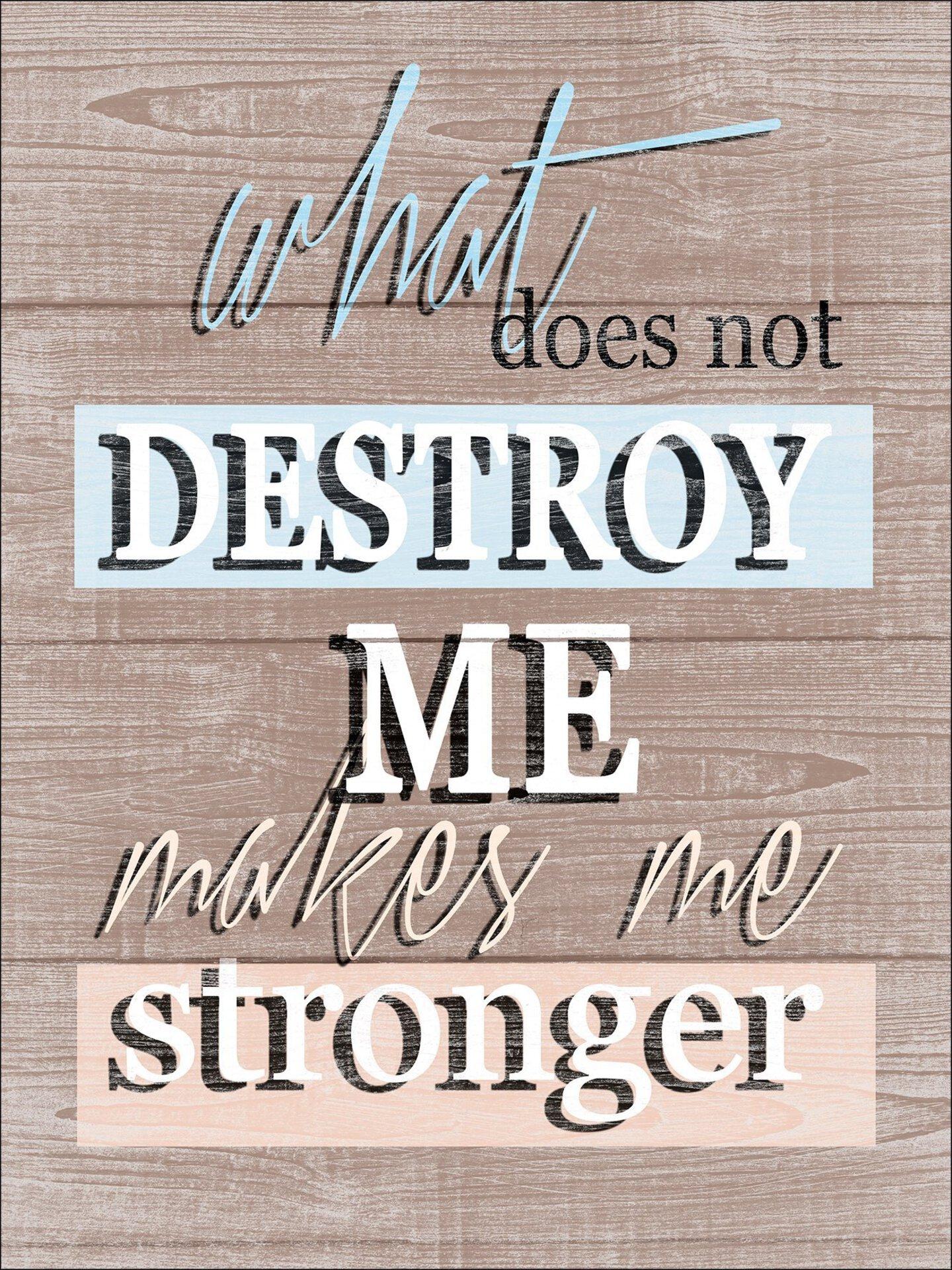 Bild Destroy & Stronger Pro-Art Holzwerkstoff mehrfarbig 29 x 39 x 1 cm