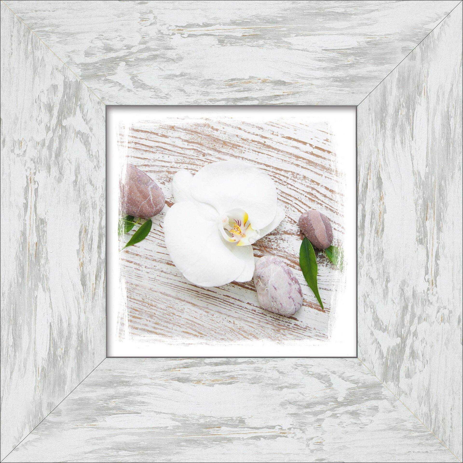 Bild White Spring IV Pro-Art Holzwerkstoff mehrfarbig 34 x 34 x 1 cm