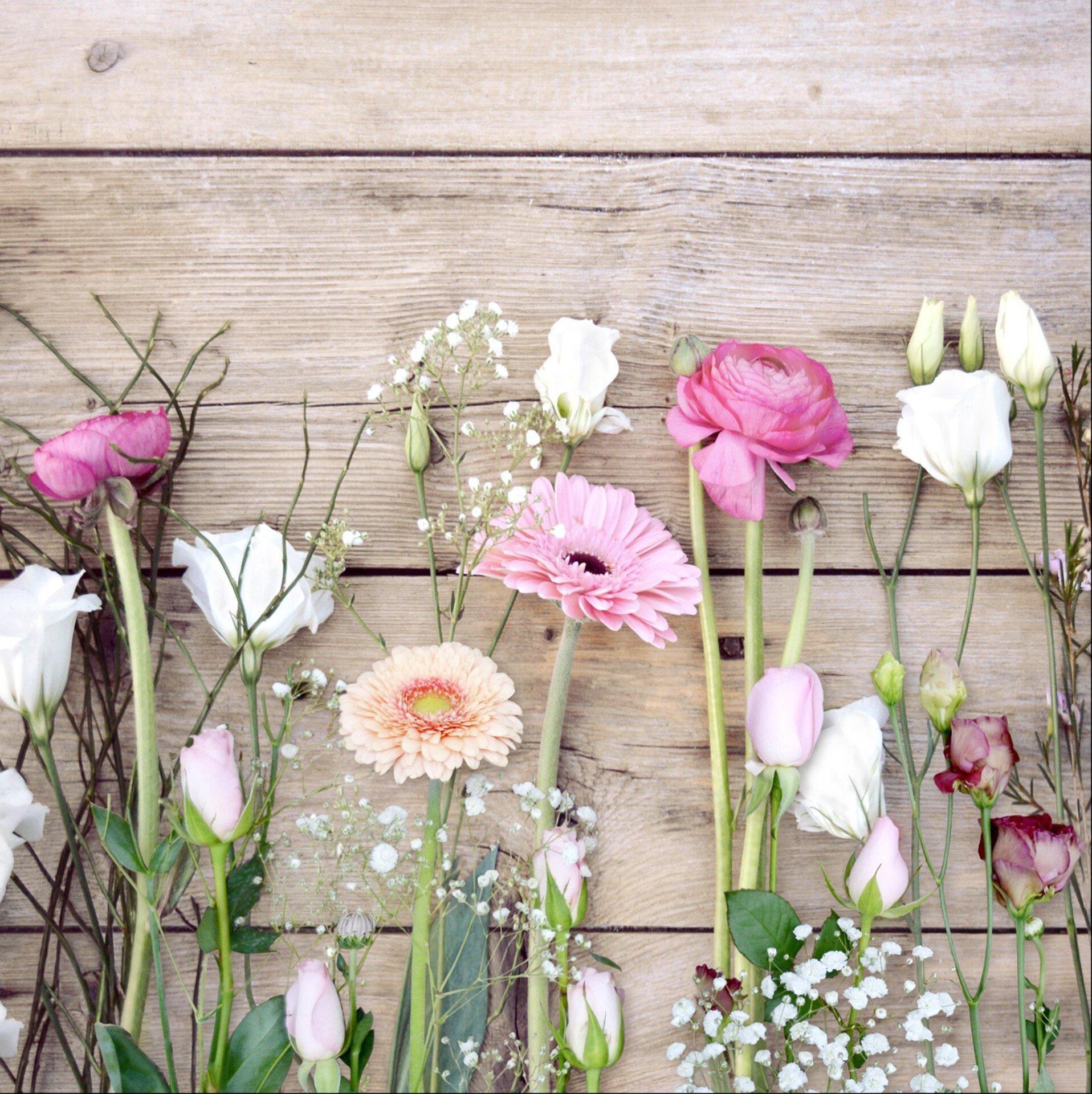 Bild Bright & Dark Roses Pro-Art Glas mehrfarbig 50 x 50 x 1 cm