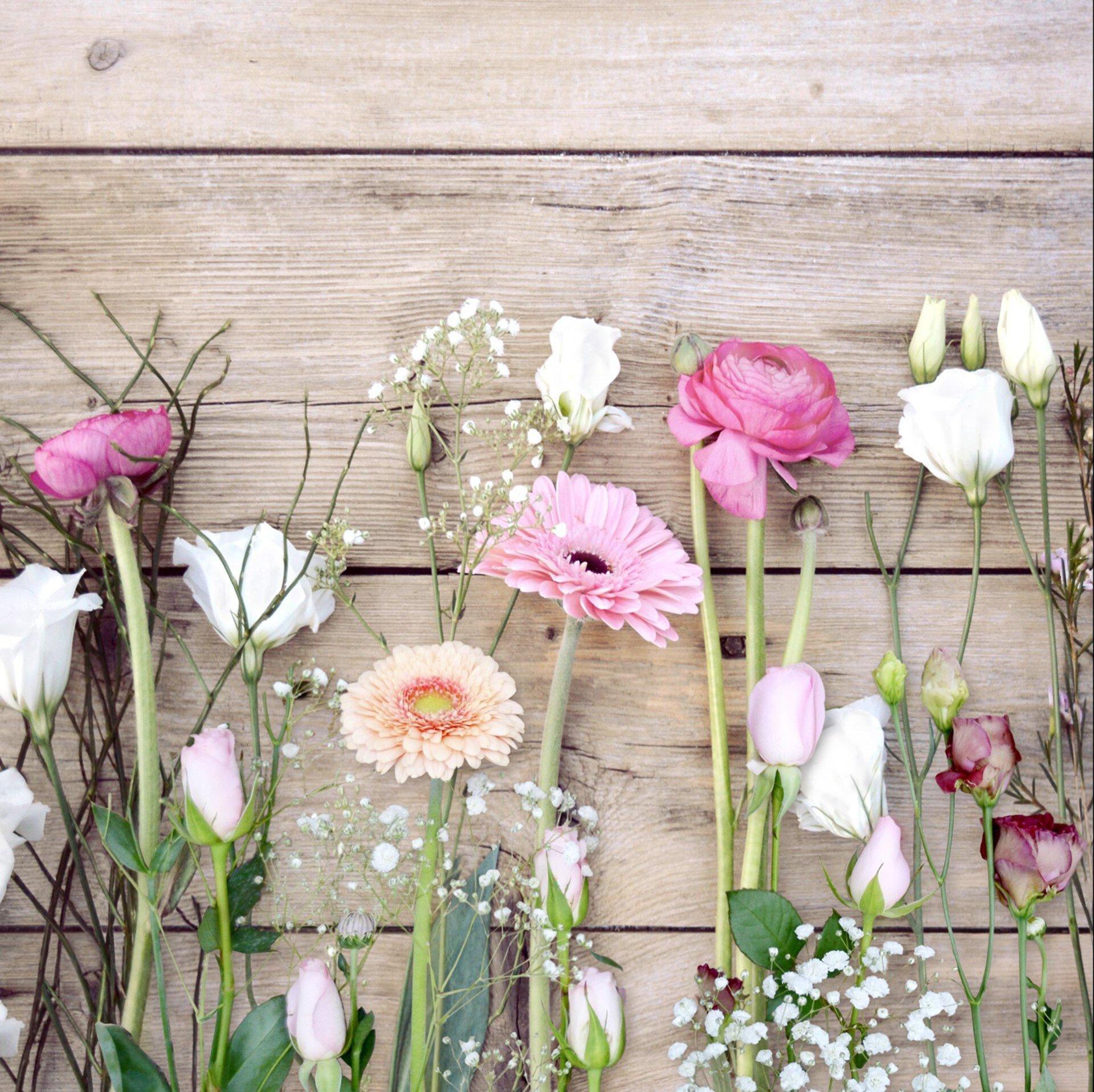 Bild Bright & Dark Roses Pro-Art Glas 20 x 20 x 1 cm