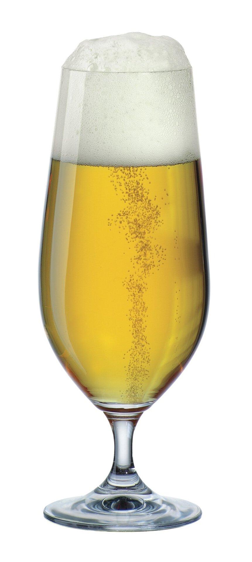 Bierglas simply Bohemia Cristal Glas transparent 19 x 14 cm