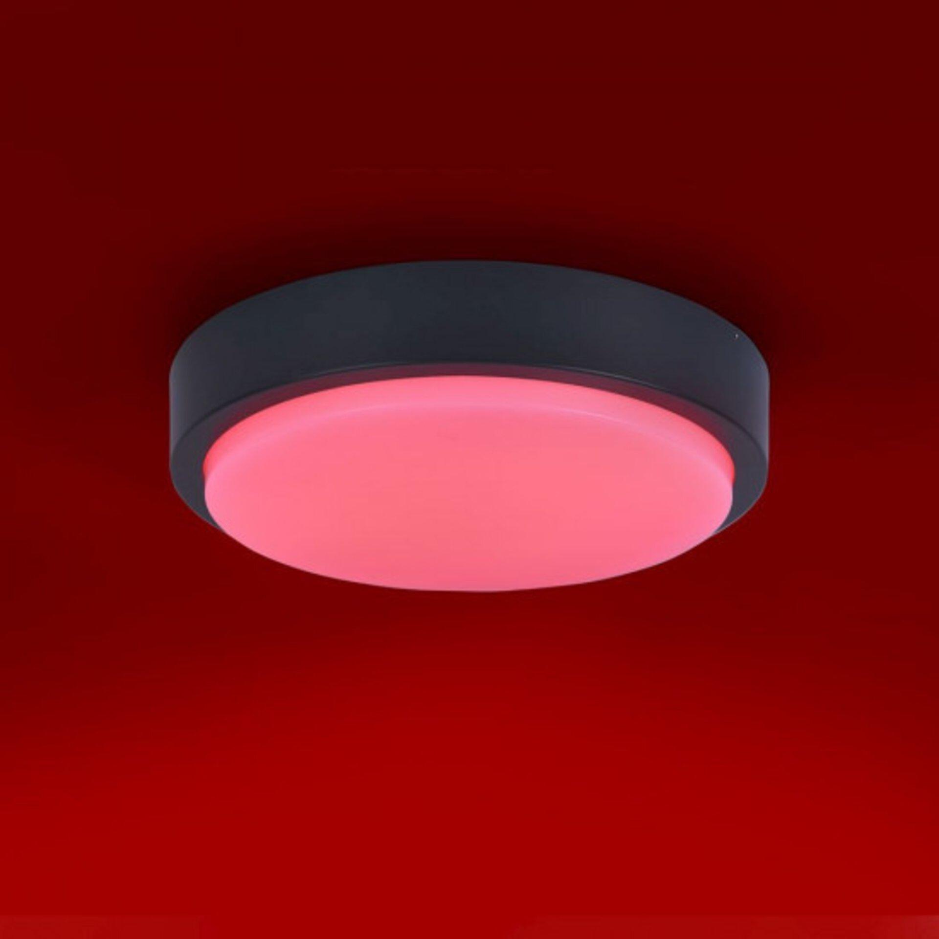 Smart-Home-Leuchten Q-LENNY Paul Neuhaus Metall grau 36 x 8 x 36 cm
