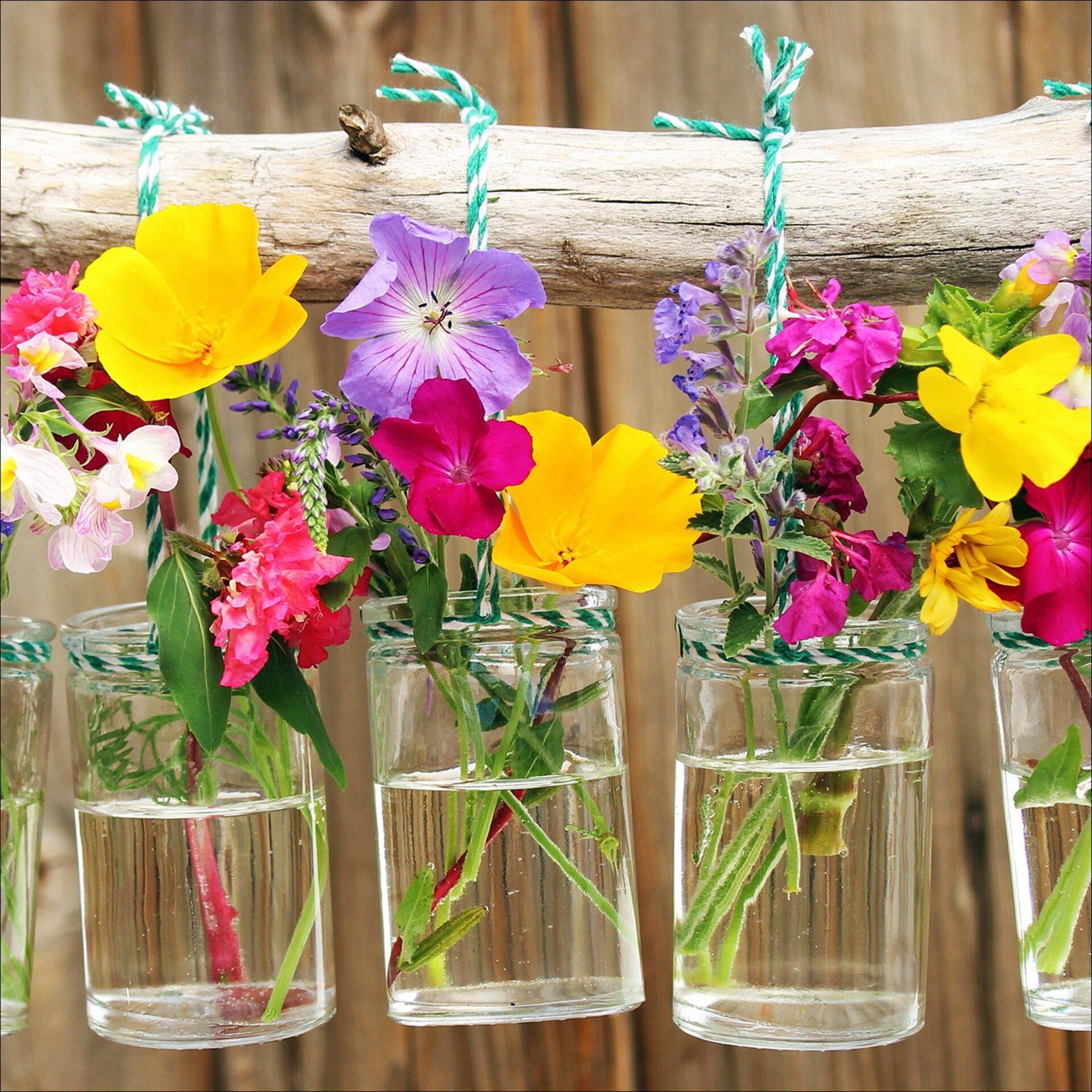 Bild Plants In Vases II Pro-Art Glas 20 x 20 x 1 cm